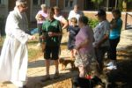 Blessing of Animals - St. Francis Feast Day